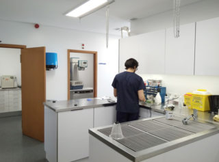 Hospital Veterinário da Maia tratamentos